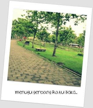 RB Taman
